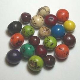 TAGUA 14 Perles en Bombona du Pérou