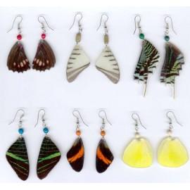 BO181 Boucles ailes de papillons